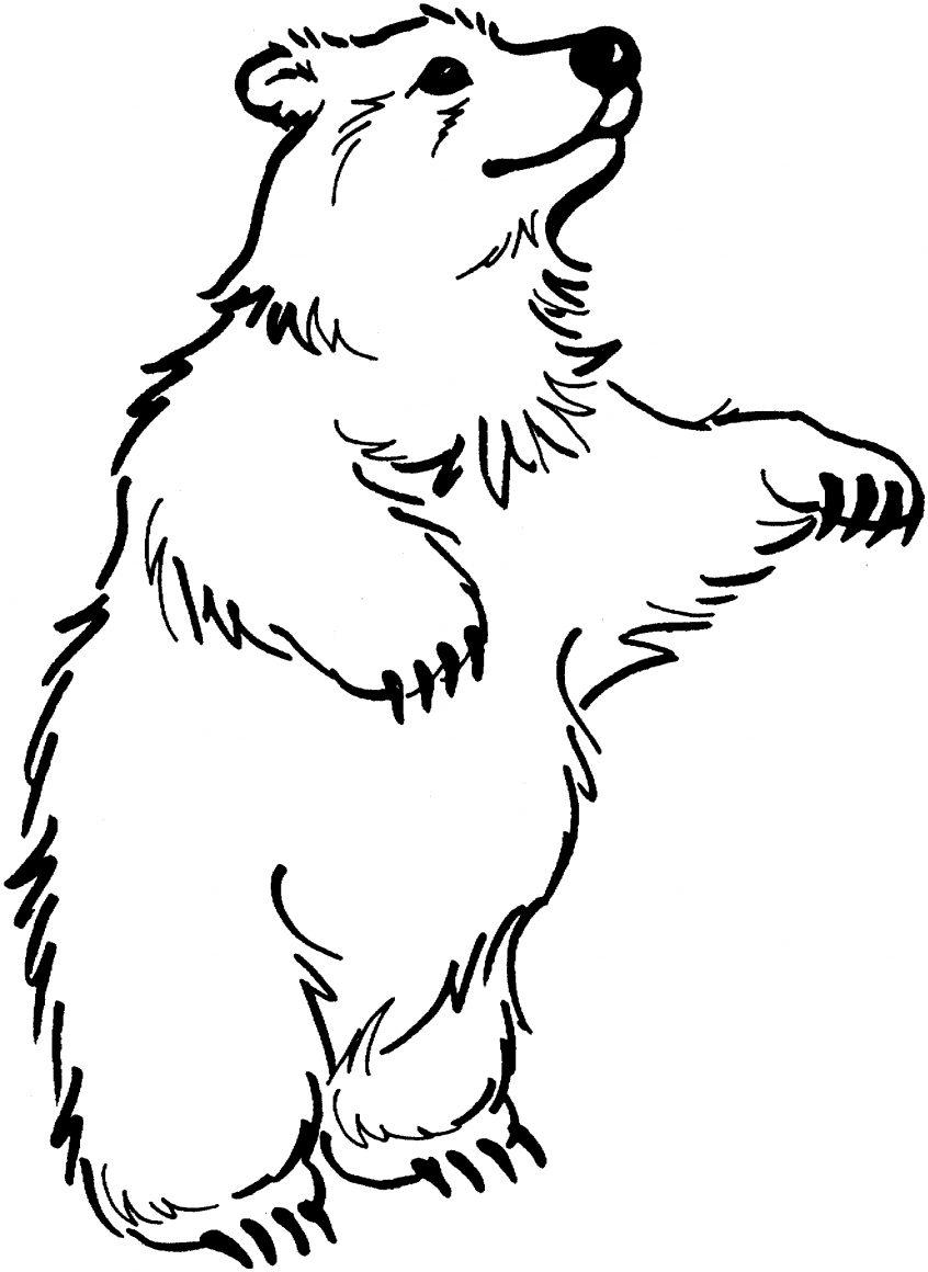 Yogi Bear Coloring Page Coloring Coloring Book Bear Elegant Yogi Pages Printable Of Images
