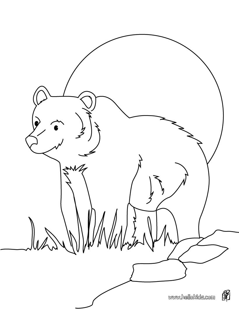 Yogi Bear Coloring Page Grizzly Bear Coloring Pages Hellokids New Coloring Pages Bear