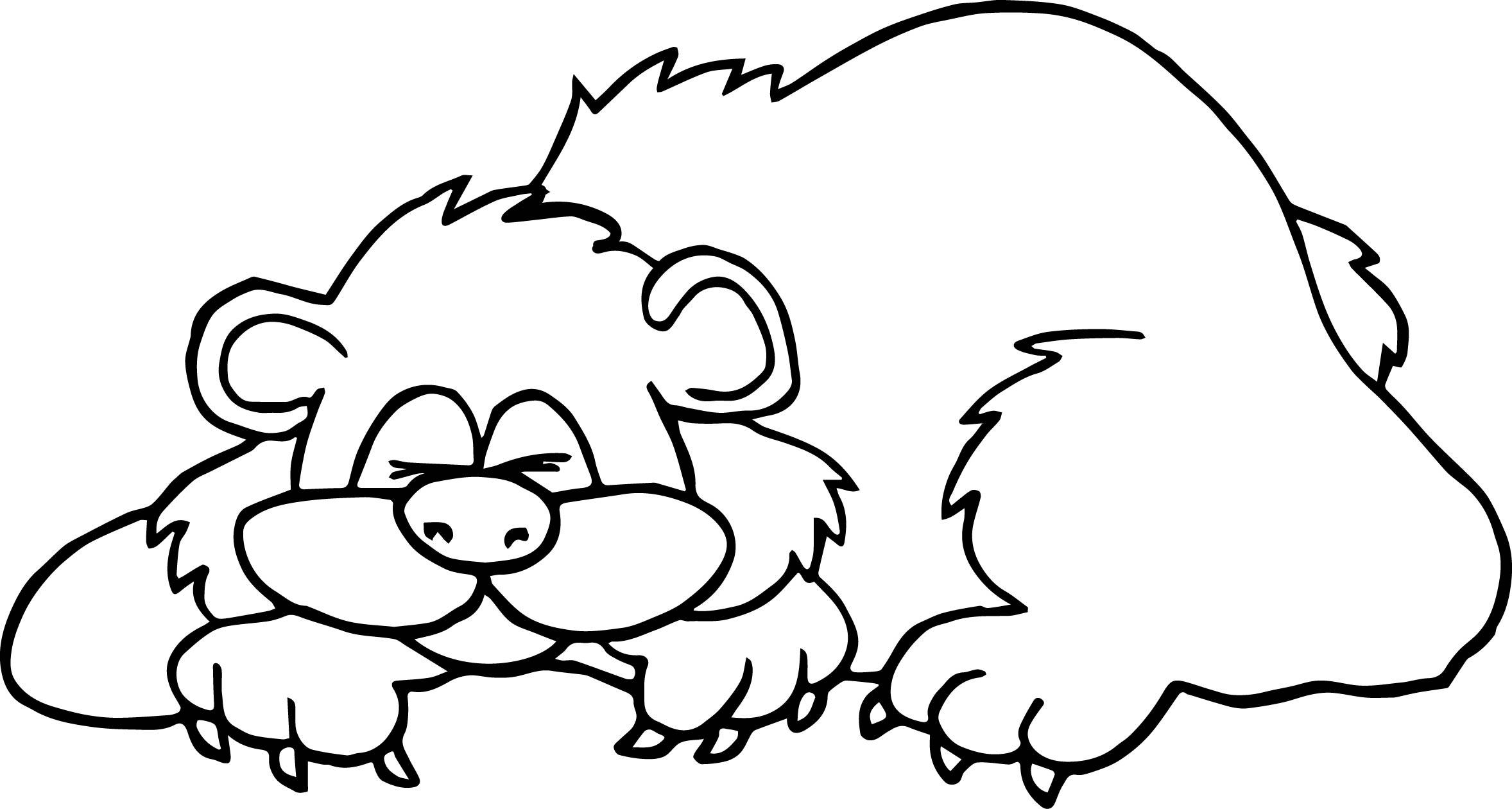 Yogi Bear Coloring Page Interesting Design Ideas Free Coloring Pages Bears Yogi Bear Google